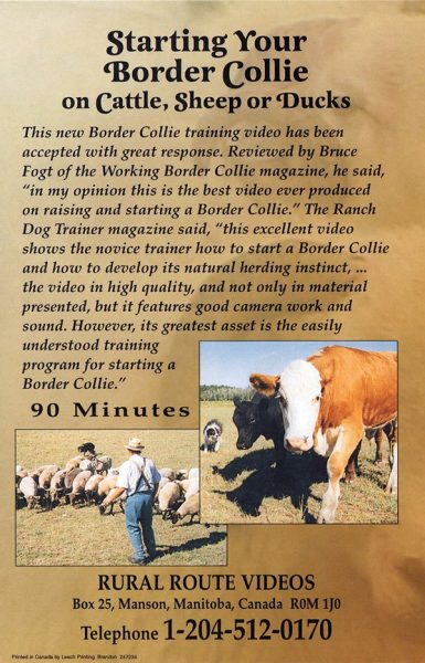 Back cover of the DVD showing dogs being trained on cattle and sheep