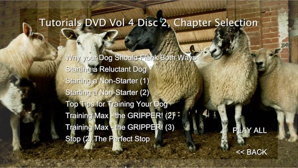 A photo of sheep inside a farm building with a list of DVD chapters